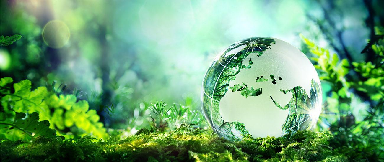 Prbx Sustainability X X